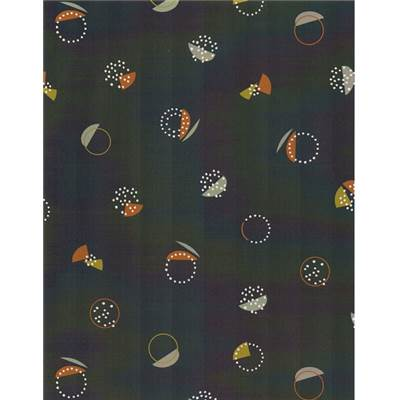 DASHWOOD STUDIO - NEW HORIZONS 1312- 100% COTON - mini 5m