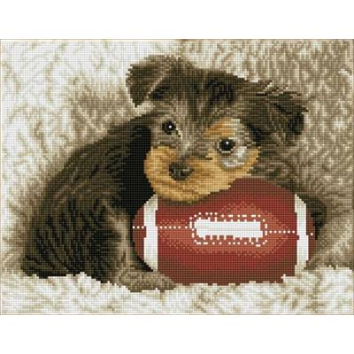 KIT BRODERIE DIAMANT SQUARES - FOOTY PUP