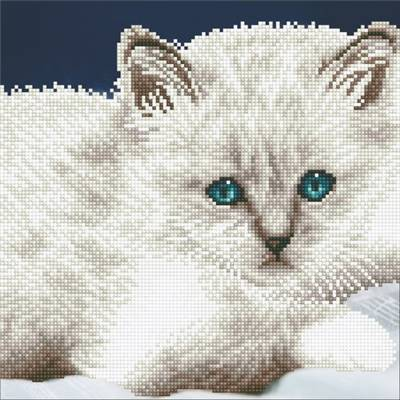 KIT DIAMOND ART INTERMEDIAIRE - CHAT BLANC
