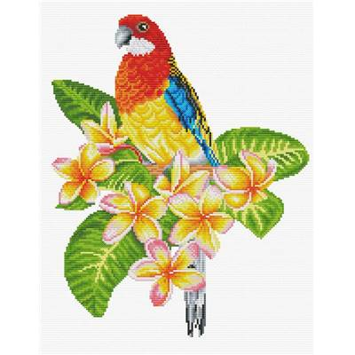 NO COUNT CROSS STITCH - PERROQUET ROSELLA