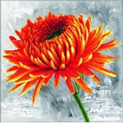 NO COUNT CROSS STITCH - LE DAHLIA ORANGE