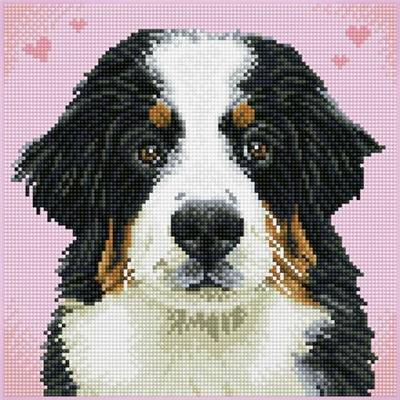 KIT BRODERIE DIAMANT SQUARES - SAY HELLO TO ZUZU