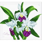 NO COUNT CROSS STITCH - UN BOUQUET D'ORCHIDEES