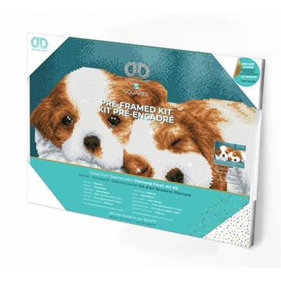 KIT BRODERIE DIAMANT SQUARES - LITTLE CHAMPS - PRE-ENCADRE